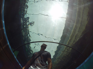 Guy in aquarium tunnel