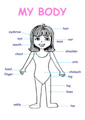 "My body"", educational info graphic chart for kids showing parts of human body of a cute cartoon girl."