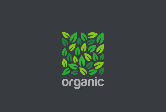 Leaves Eco Logo square design vector. Organic Natural Garden