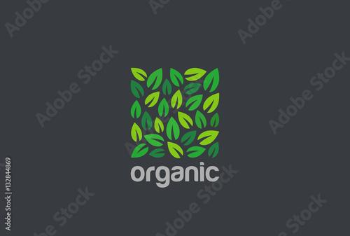 Wall mural Leaves Eco Logo square design vector. Organic Natural Garden