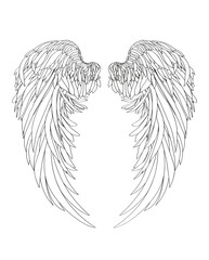 Wings. Vector illustration on white background. Black and white