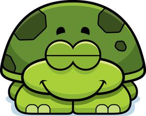 Sleeping Little Turtle