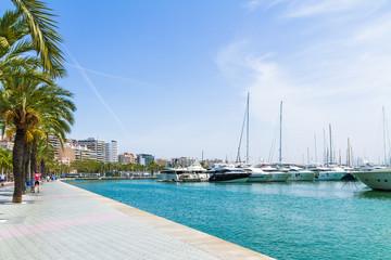 Palma de Mallorca Carrer Del Moll marina skyline with yachts