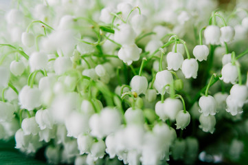 Photo sur Plexiglas Muguet de mai Blossoming lily of the valley in the forest. Lily-of-the-valley. Convallaria majalis.Spring background. Floral background.Selective focus.