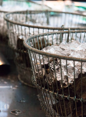 Oysters in wire baskets with ice