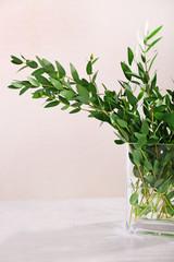 Green eucalyptus branches in vase on light background