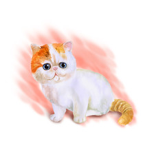 Watercolor portrait of Munchkin short-legged cat isolated on pink background. Hand drawn sweet home pet. Bright colors, realistic look. Blue eyes. Greeting card design. Clip art. Add any text