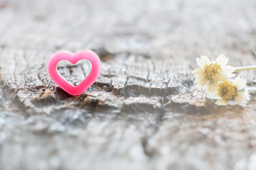 Couple of grass flower and pink heart on wood.
