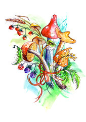 Bunch of mushrooms, berries, plants, herbs, over white background. Figure executed in watercolor. Russula, chanterelle, mushrooms and other fungi. The variant with a black outline and paint splatter