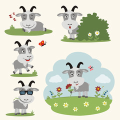 Vector set funny goat in different poses on summer meadow with flowers. Collection little goat in cartoon style.