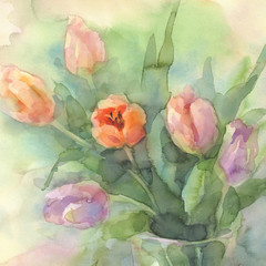 color tulips in vase watercolor