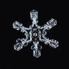 natural snowflakes, photo real snowflakes during a snowfall, under natural conditions at low temperature