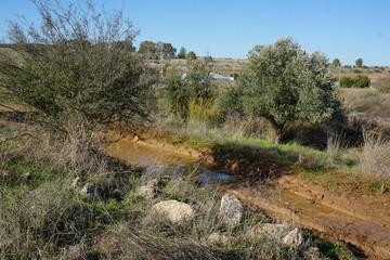 Nice Trail Road and walk in the  Burma Road Near Jerusalem Israel