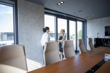 Two businesswomen talking in board room