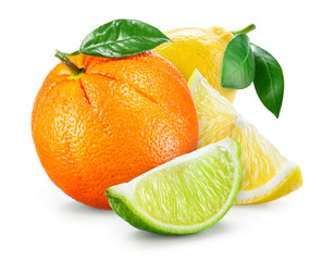 Citrus Fruit. Composition with leaves isolated on white backgrou