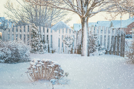 Winter Garden with falling snow