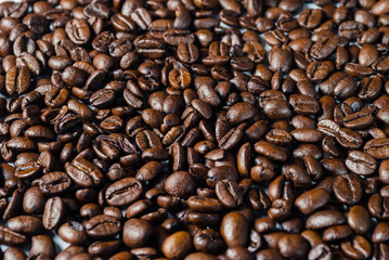 Coffebeans on Neutral Gray Background. Dark Roast Coffee.