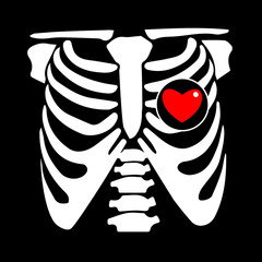 chest, rib, vector, skeleton, heart, bone, illustration