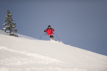 Men skiing down mountains in beautiful nature. Behind him is snowy spruce tree.
