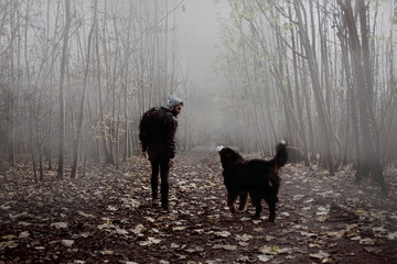 Dog and Man Walking in the Forest