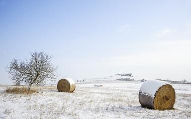 Winterlandschaft mit Felsen auf einer Anhöhe bei Oggau