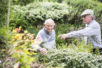 Two senior men in garden