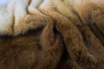 Texture, background. mink fur. Mink coat. Gold color mink fur. a