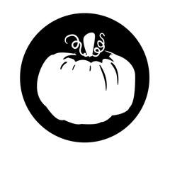 pumpkin vegetable icon image vector illustration design