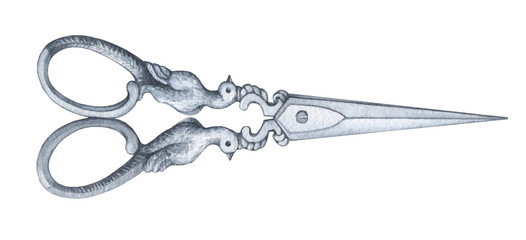 Antique scissors - vintage accessory. Hand drawn watercolor painting on white background.