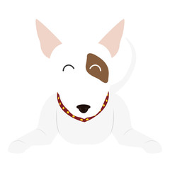 cartoon cute bull terrier dog icon over white background. coloful design. vector illustration