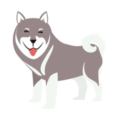 cartoon cute dog icon over white background. coloful design. vector illustration