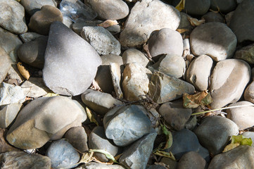 Texture, background. pebbles. a small stone made smooth and roun