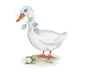 Watercolor. Goose with rose branch Vintage