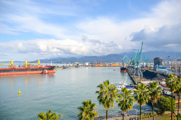 Large seagoing vessels coming to the port of Batumi.