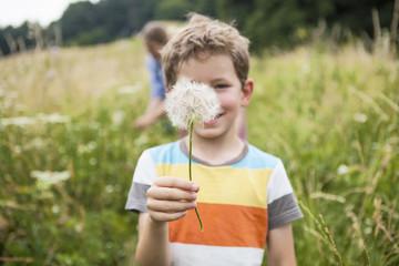 Boy holding dandelion flower