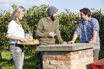 Group of friends take a break during wine harvest