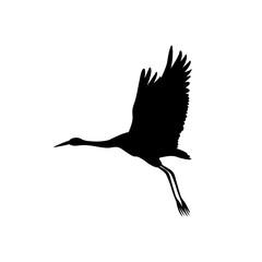 Crane bird black silhouette  vector illustration