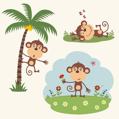 Vector set funny monkey in different poses in summer. Collection little monkey in cartoon style.
