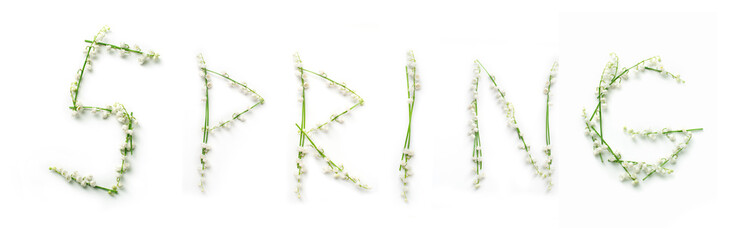 word Spring with lily flowers on white background