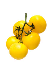 yellow tomatoes isolated on a white background
