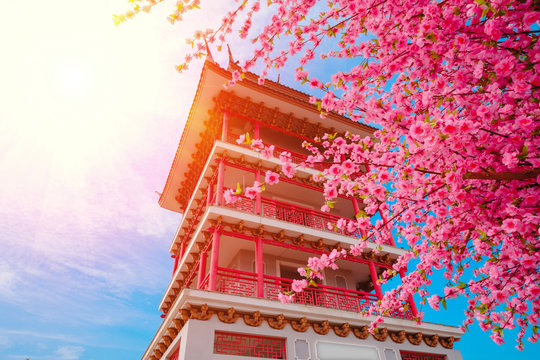 Artificial Sakura flowers or cherry blossoms and Pagoda on japan style on blue sky backgroun.