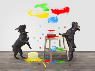 Funny dog standing on its hind legs. Repair, jars of bright paint. Colorful traces of the paws of animals