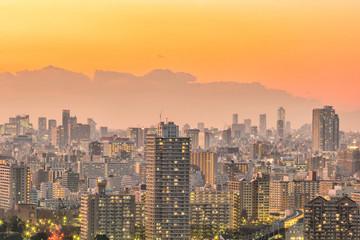 Tokyo city skyline at sunset