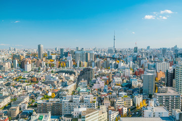 Staande foto Tokyo Downtown Tokyo skyline