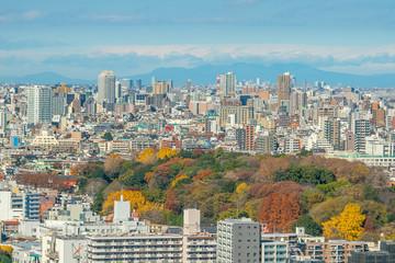 Downtown Tokyo skyline