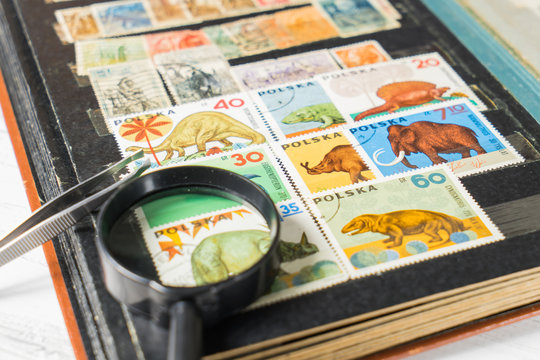 stamp collecting. Philatelic. Different brands in the album for
