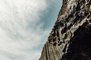 Birds flying by rock formation