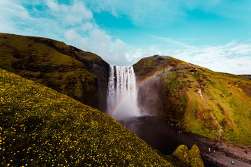 Scenic view of waterfall and rainbow