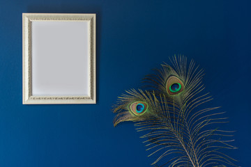 photo frame and peacock tail feathers