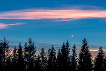 Shining clouds and crescent moon in evening landscape